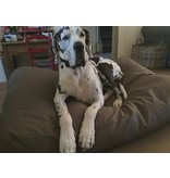 Dog's Companion® Hondenbed superlarge taupe leather look