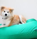 Dog's Companion® Hondenbed superlarge lentegroen vuilafstotende coating