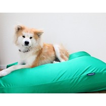 Hondenbed lentegroen vuilafstotende coating small