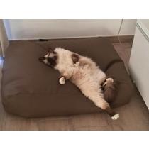 Kattenkussen taupe leather look 55 x 45 cm