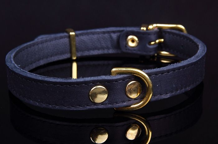 Dog's Companion® Verstelbare leren halsband exclusive gold