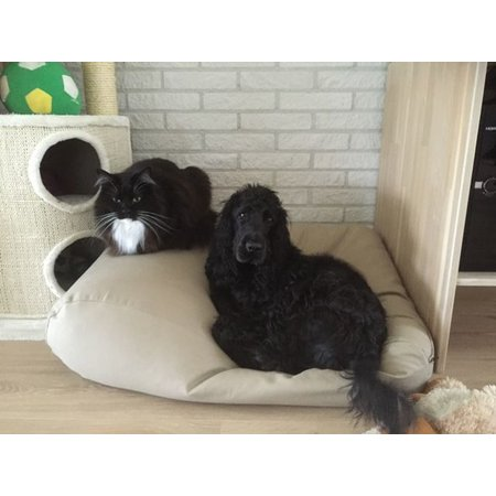 Dog's Companion® Hondenbed large beige