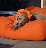 Dog's Companion® Hondenbed extra small oranje