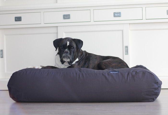 Dog's Companion® Hondenbed antraciet large
