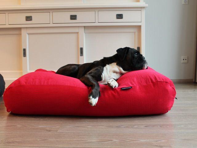 Dog's Companion® Hondenbed medium rood ribcord