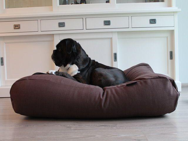 Dog's Companion� Hondenbed chocolade bruin (meubelstof)