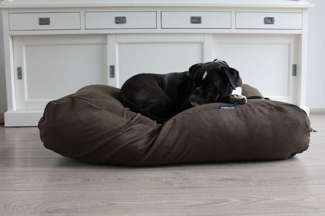 Dog's Companion® Hondenbed extra small natuurlijk bruin ribcord