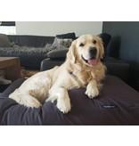 Dog's Companion® Hondenbed large antraciet