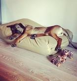 Dog's Companion® Hondenkussen medium khaki vuilafstotende coating
