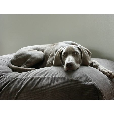 Dog's Companion® Hondenbed muisgrijs ribcord small