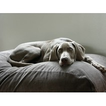 Hondenbed muisgrijs ribcord medium