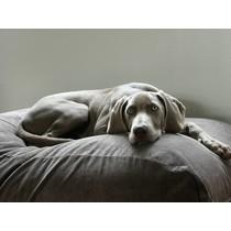 Hondenbed muisgrijs ribcord large