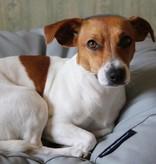 Dog's Companion® Hondenkussen lichtgrijs extra small
