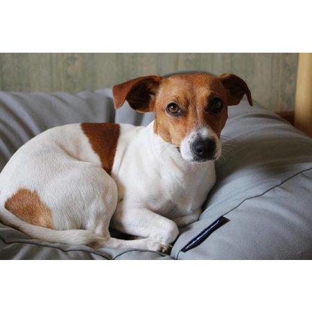 Dog's Companion® Hondenkussen lichtgrijs small