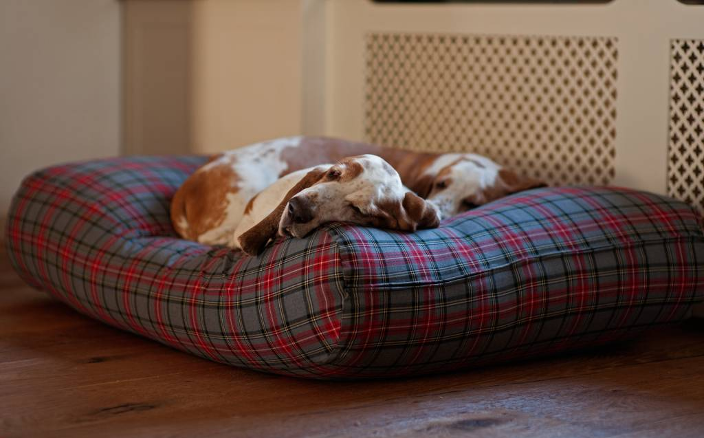 Dog's Companion� Hondenbed scottish grey