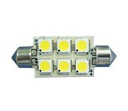 LED buislampjes