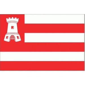 Alkmaarse vlag