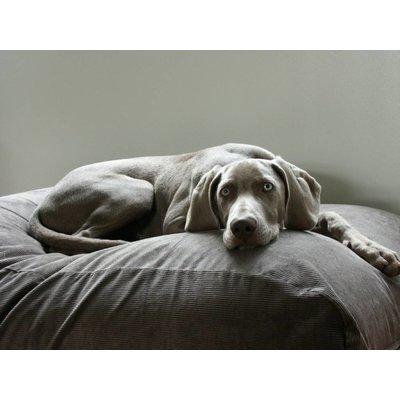 Dog's Companion® Hondenbed muisgrijs ribcord