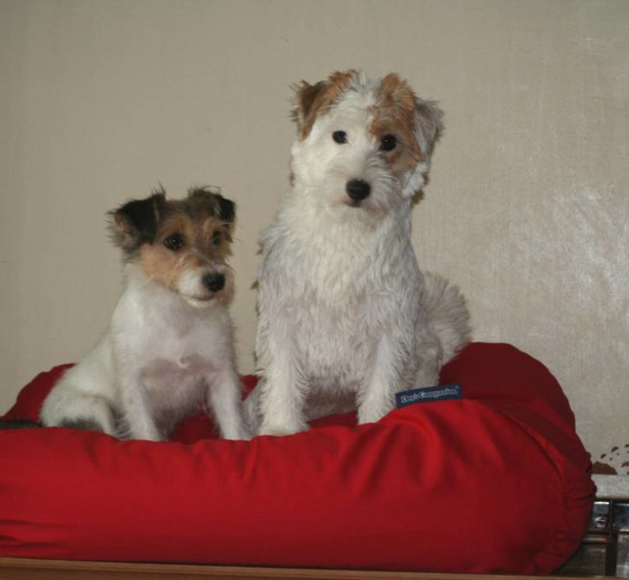 Hondenbed Rood