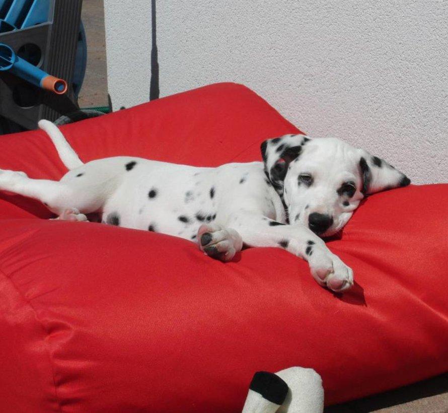 Hondenkussen Rood Vuilafstotende Coating