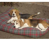 Dog's Companion® Dog bed Scottish Grey