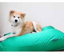 Dog's Companion® Dog bed spring green (coating)