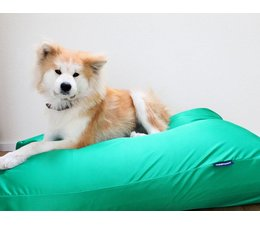 Dog's Companion® Dog bed spring green (coating)