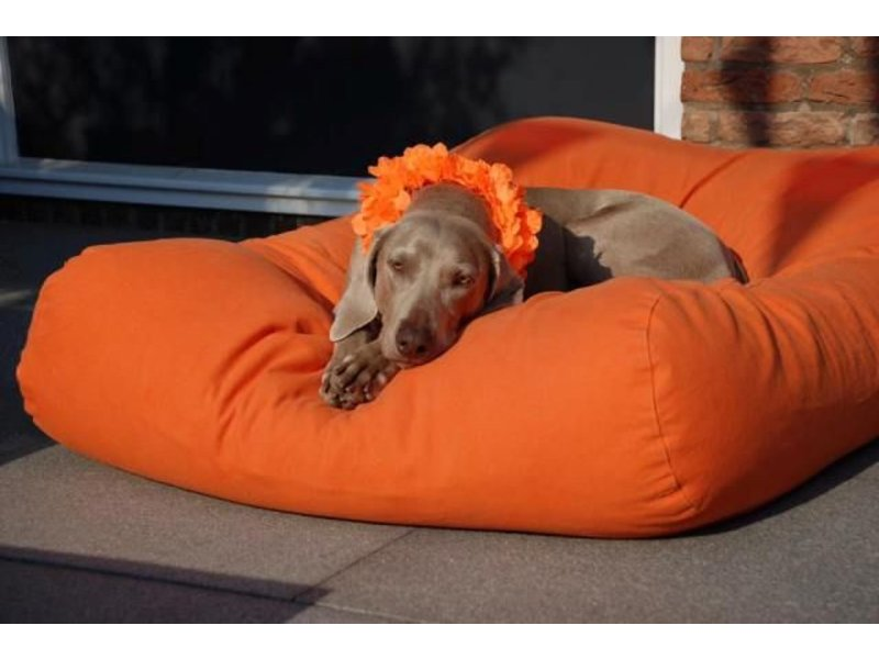 Dog's Companion® Hundebett Orange
