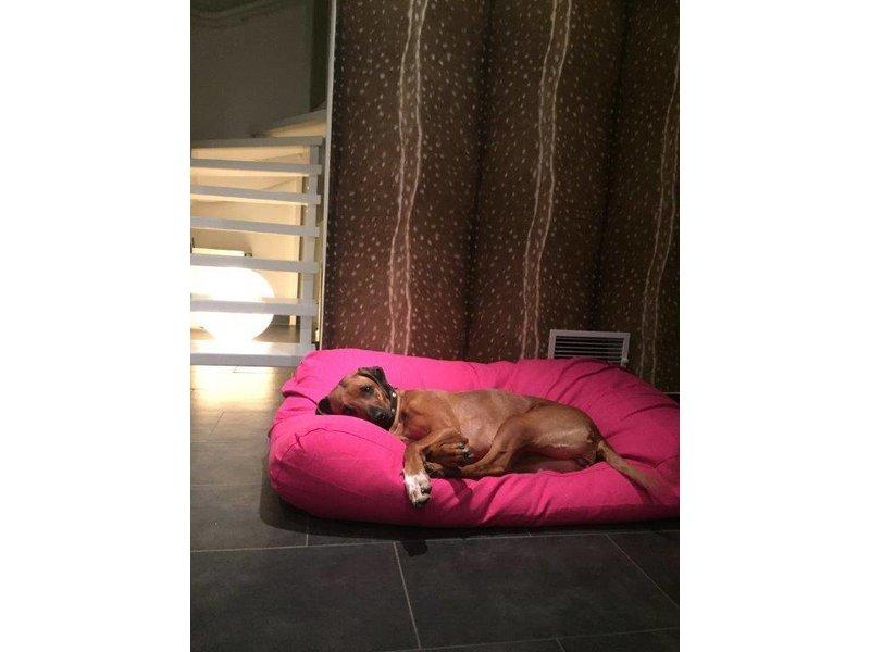 Dog's Companion® Hundebett Rosa