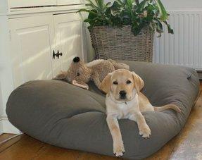 Lits pour chiens canvas coton