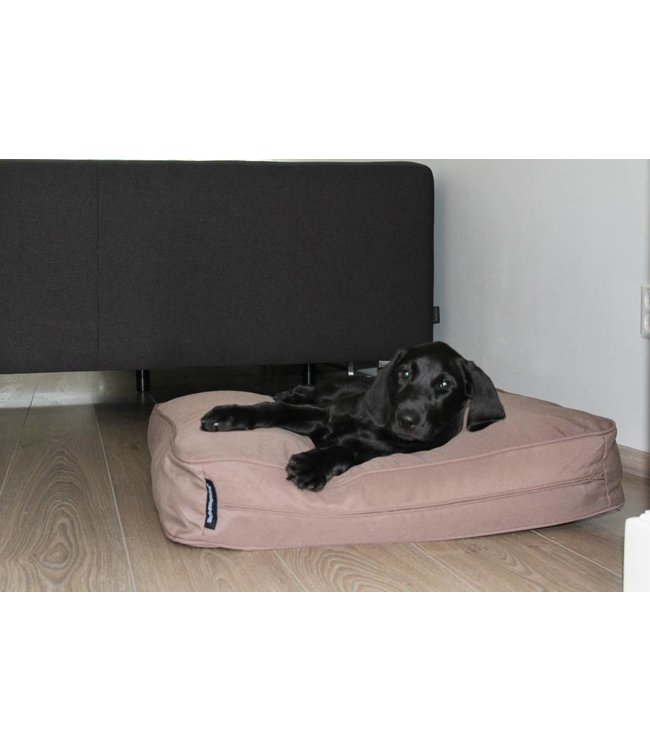 Dog's Companion Dog bed bench cushion taupe (68 x 62 x 10 cm)
