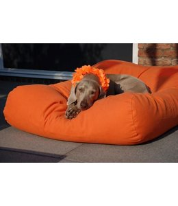 Dog's Companion Hundebett Orange Medium