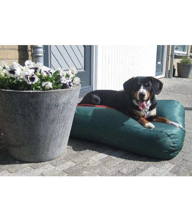 Dog's Companion® Dog bed Green (coating) Extra Small