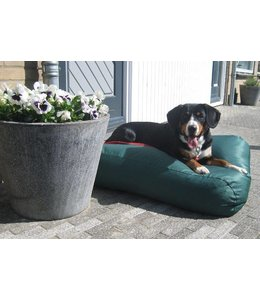 Dog's Companion® Hundebett Superlarge Grün (beschichtet)