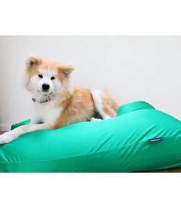 Dog's Companion® Dog bed spring green (coating) Extra Small