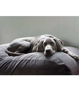 Dog's Companion Dog bed Mouse Grey (Corduroy) Large