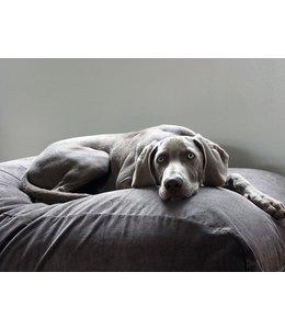 Dog's Companion Hundebett Mausgrau (Cord) Large