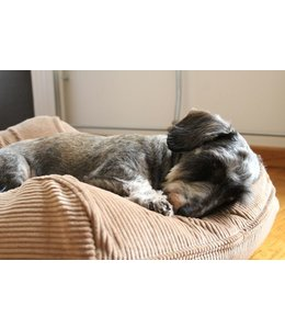 Dog's Companion® Dog bed Camel (Corduroy) Medium