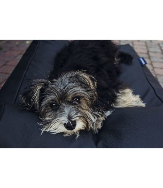 Dog's Companion® Dog bed Extra Small Black leather look