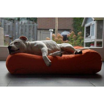 Medium Hundebetten