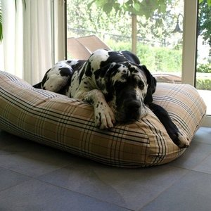 Dog Bed Xxl Free Delivery Dog Beds By Dog S Companion