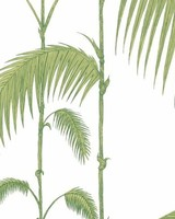 Cole & Son Behang Palm Leaves 95/1009