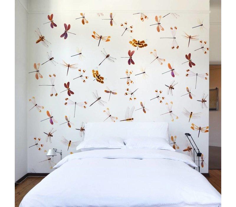 Naturalis Originals - Diverse soorten libellen