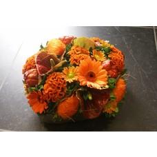 Oranje 1214