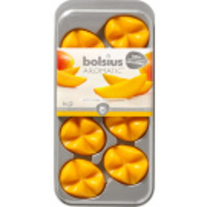 Bolsius Geurchips Creations Blister Exotic Mango 8 stuks