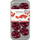 Bolsius kaarsen Geurchips Creations Blister Wild Cranberry 8 stuks