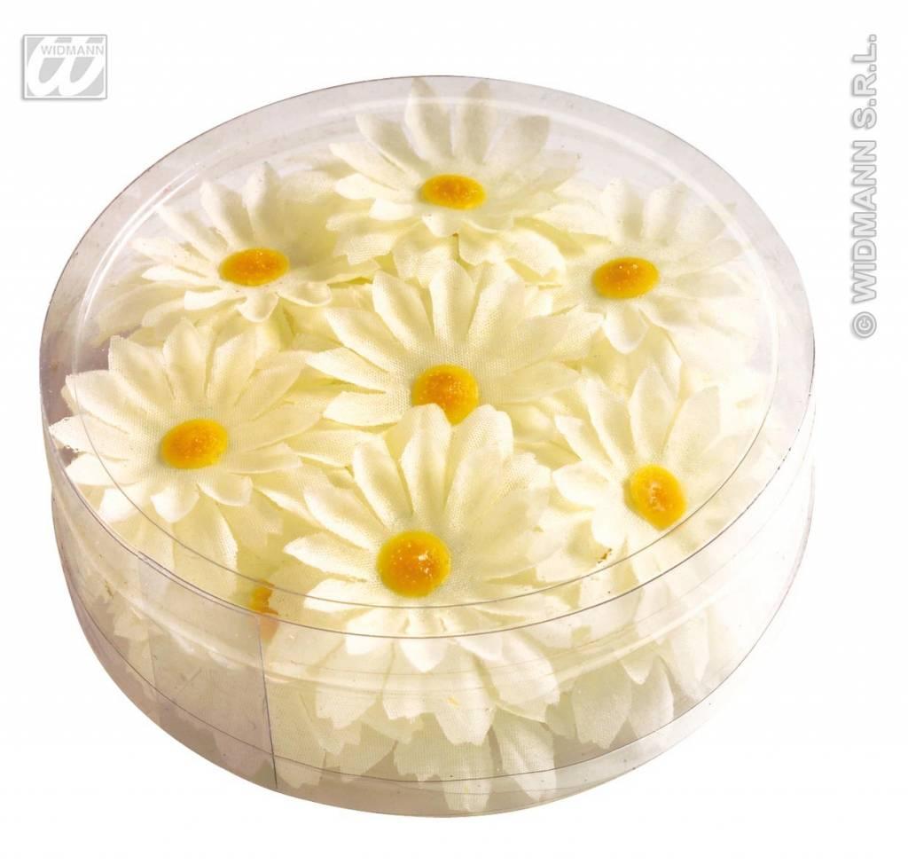 Decoratie margrietjes bloemen for Bloemen decoratie