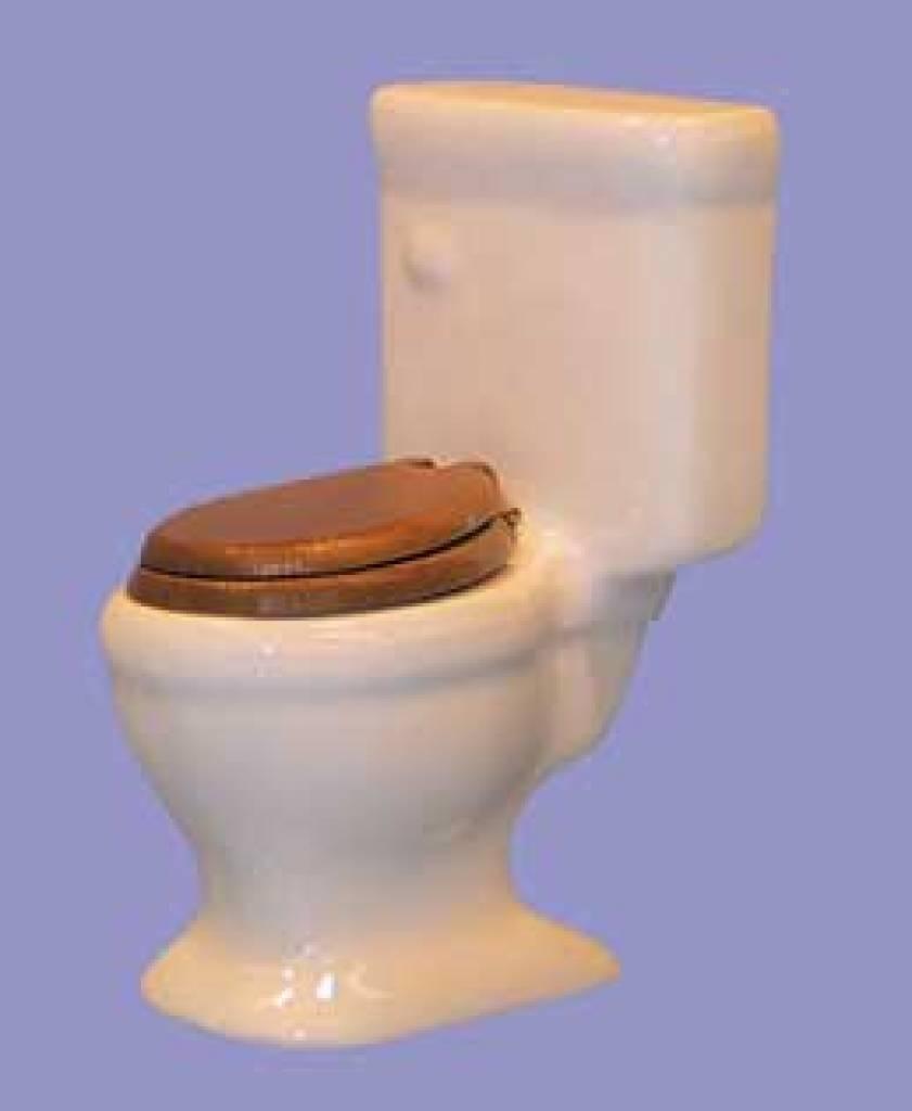 Euromini 39 s toilet porselein euromini 39 s - Porselein vloeren ...