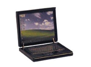 Euromini's Laptop, zwart