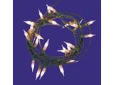 Euromini's Kerstverlichting 24x helder micro kaars 2mm, zonder stekker